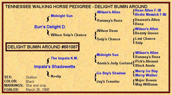 Delight Bumin Around Pedigree