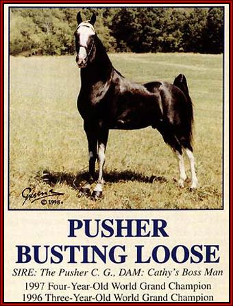 Pusher Busting Loose