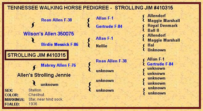 Strolling Jim Pedigree - click on the blue names for more information.