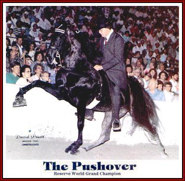 what is a pushover